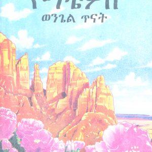 የማቴዎስ ወንጌል ጥናት – Mathew's Gospel Study Book