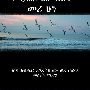 የሚጠበቅብህ ዓይነት መሪ ሁን፡- እግዚአብሔር እንድትሆነው ወደ ጠራህ መሪነት ማደግ በለሮይ ኤይምስ – Be the Leader You Were Meant to Be: Growing Into the Leader God Called You to Be by LeRoy Eims
