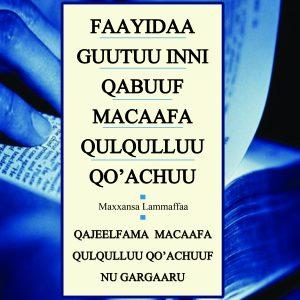 FAAYIDAA GUUTUU INNI QABUUF MACAAFA QULQULLUU QO'ACHUU: QAJEELFAMA MACAAFA QULQULLUU QO' ACHUUF NU GARGAARU Maxxansa Lammaffaa Gordon D. Fee fi Douglas Stuart – How to Read the Bible for All Its Worth by Gordon D. Fee & Douglas Stuart (Oromiffa)